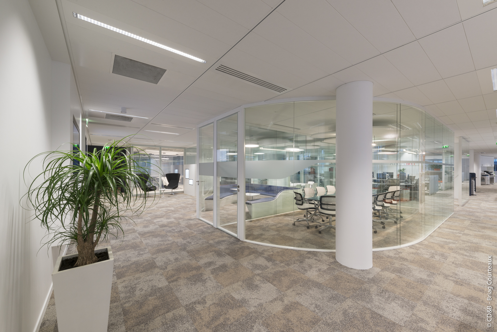 Conseil, aménagement, conception et réalisation des espaces de la société BNP Paribas Real Estate par CDB, Meet you there.